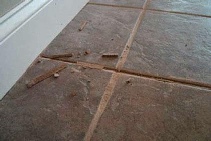 Crumbling Grout Tile Floor